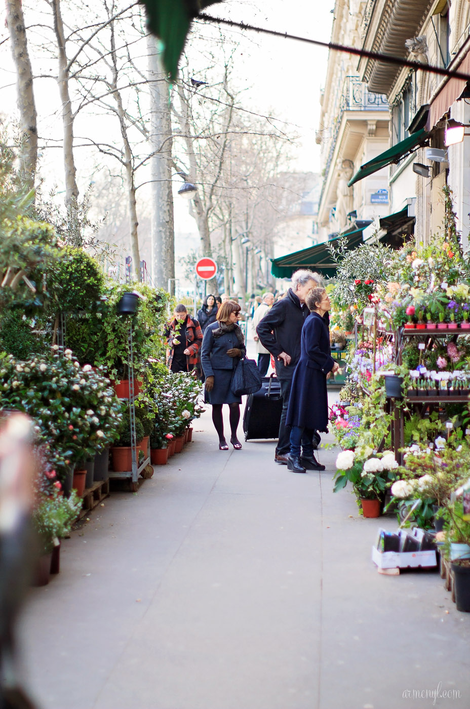 Best Flower shops in Paris photographed by Lifestyle and fashion Blogger Armenyl.com