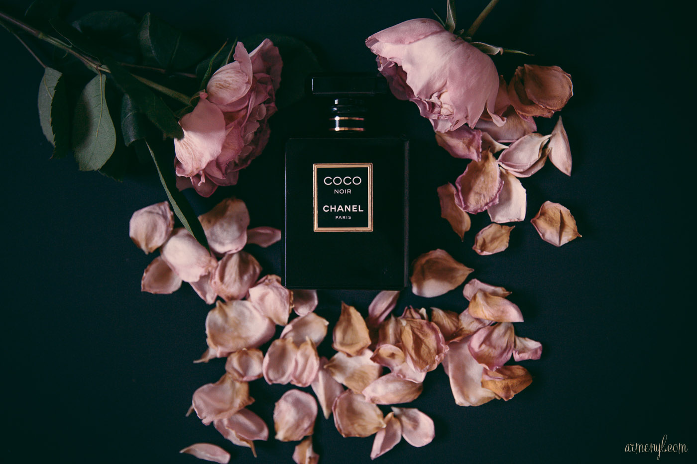 COCO NOIR BY CHANEL armenyl-2016-holiday-gift-ideas-for-women-photo-by-armenyl-com